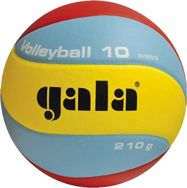 GALA Volleyball 10 - BV 5551 S